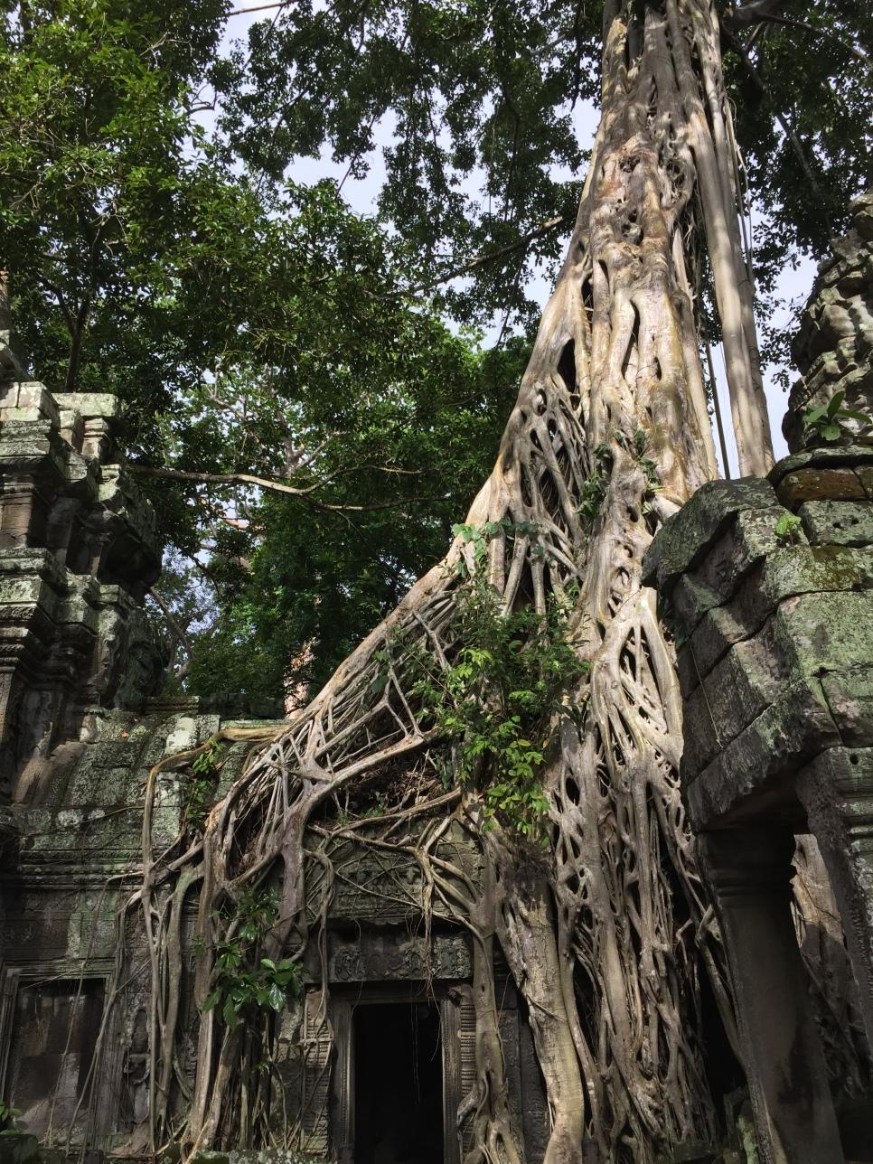 Angkor wat 098