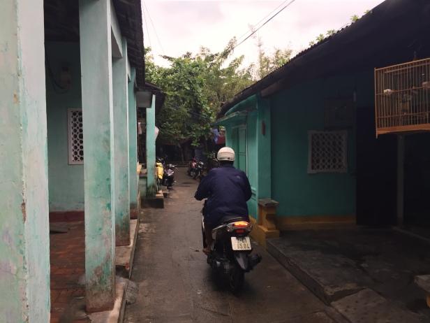 Vietnam 302