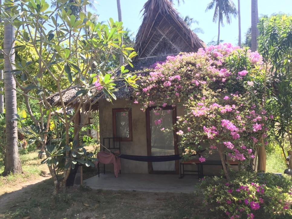 Kohlanta 116